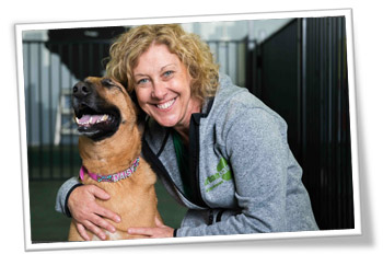 Wendy works at our dog day care centre and does pet sitting as well